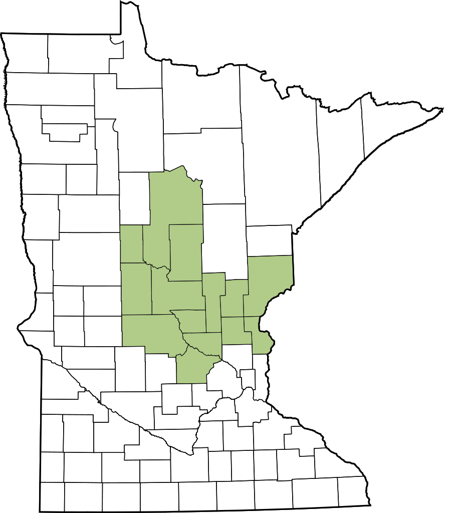 Central Minnesota map