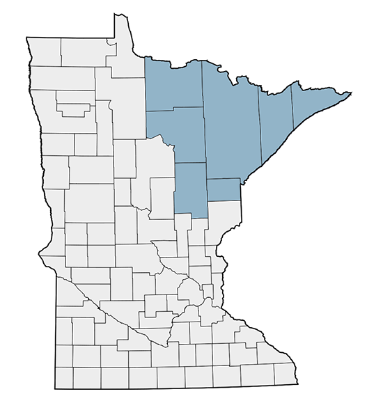 Northeast Minnesota Map